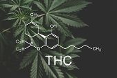 Thc Formula, Tetrahydrocannabinol . Growing Marijuana, Medical Marijuana, Despancery Business. Canna poster