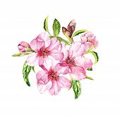 Spring Blossom - Bouquet Of Pink Sakura, Cherry Flowers. Springtime Floral Watercolour poster