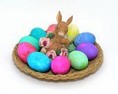 Bunny Egg Platter