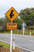 Sign Caution Pinguins