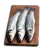 Fresh  Whole Sea Bass Fish On Cutting Board Isolated On A White poster