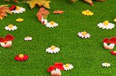 picture of shroom  - Nice artificial daisies and small mushrooms on artificial green grass - JPG