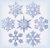 Set of ornate three-dimensional snowflakes icons.