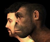 stock photo of primite  - A portrait of a modern human and a Homo Erectus man side - JPG