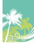 Palm Wave