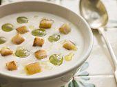 Sopa de ajo ajo Blanco-blanco