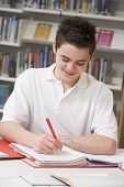 Portrait Of Teen Pupil Studying In School Library