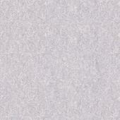 Parchment Paper Series 7