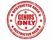 Genius Only-stamp