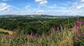 Above Llandrindod Wells lake panorama, Wales UK.