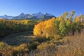 stock photo of mear  - Dallas Divide Uncompahgre National Forest Colorado USA - JPG