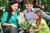 Father, mother, sister and baby look at bunch of flowers on bench in garden near verdant hedge.