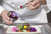Midsection closeup of male chef arranging edible flowers on salad in commercial kitchen