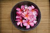 Top view many red frangipani in bowl on bamboo mat