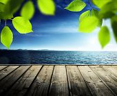 pier, sea and green leaves