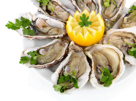 pic of oyster shell  - Oysters isolated on white - JPG