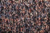 Wool knittwear