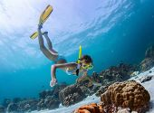 Young lady snorkeling over coral reefs in a tropical sea