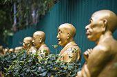 Buddha statues at Ten Thousand Buddhas Monastery in Hong Kong, China.