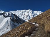 Foot path of the Tilicho Trek and snow covered Tilicho Peak