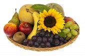 Large Basket Of Fruit Ornate With Sunflower