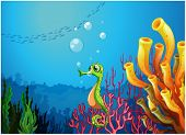 pic of seahorses  - Illustration of a seahorse near the coral reefs - JPG