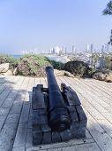 Napoleon's Cannon