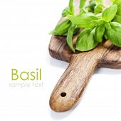 Fresh herbs on white background (with easy removable sample text)