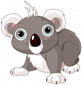 Illustration of cute funny koala
