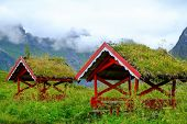 Traditional norwegian arbour standing in a lush