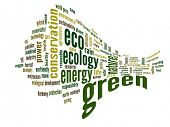 High resolution concept or conceptual 3D abstract green ecology and conservation word cloud text on