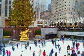 Rockefeller Center Tree View