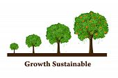 Growth Sustainable