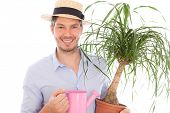 home gardener growing the plants