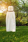 Wedding dress in a spring park