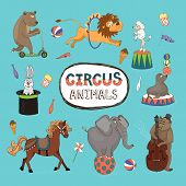 Vector set of colorful circus animals