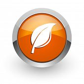nature orange glossy web icon