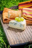 Blue cheese with grapes and baguette on wooden tray outdoors