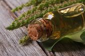 picture of ribwort  - Extract of plantain in a glass bottle on a wooden table macro horizontal - JPG