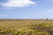 4X4 Safari In The Falkland Islands-5