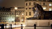 One of the bronze Lions of Trafalgar Square at night, London, UK