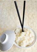 Rice Mochi