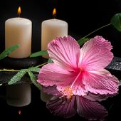 Beautiful Spa Concept Of Hibiscus, Tendril Passionflower, Candles And Zen Stones With Drops On Refle