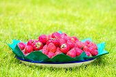 A Dish Of Strawberries Standing On The Grass. Summer Vacation Concept.