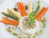 Vegetarian Sun