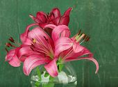 Beautiful lily in vase on wooden background