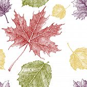 Hand drawn pattern with autumn leaves