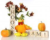 A cute plush turkey among small pumpkins, fall flowers and alphabet blocks spelling