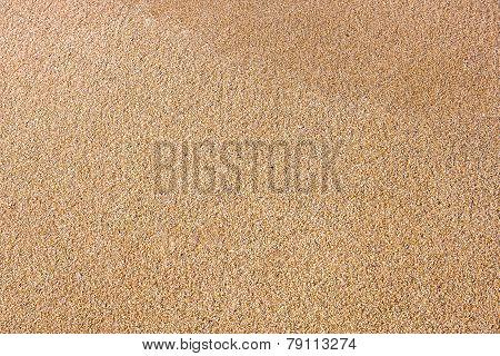 Close Up Of Sea Beach Sand Or Desert Sand