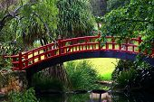 Japanese Style Walk Bridge